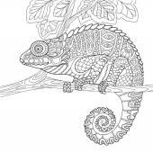 Zentangle stilisiert Chameleon
