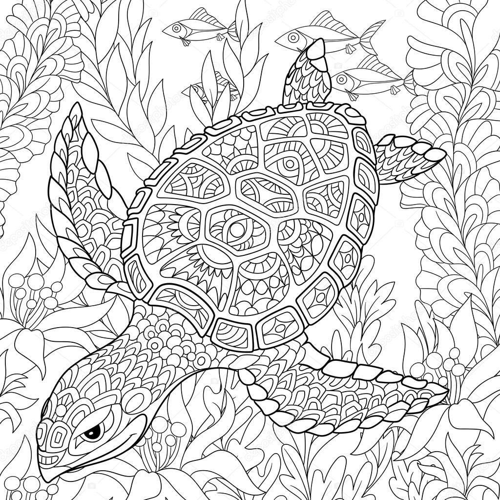 Zentangle Tortue Stylisée Image Vectorielle Sybirko 104877096