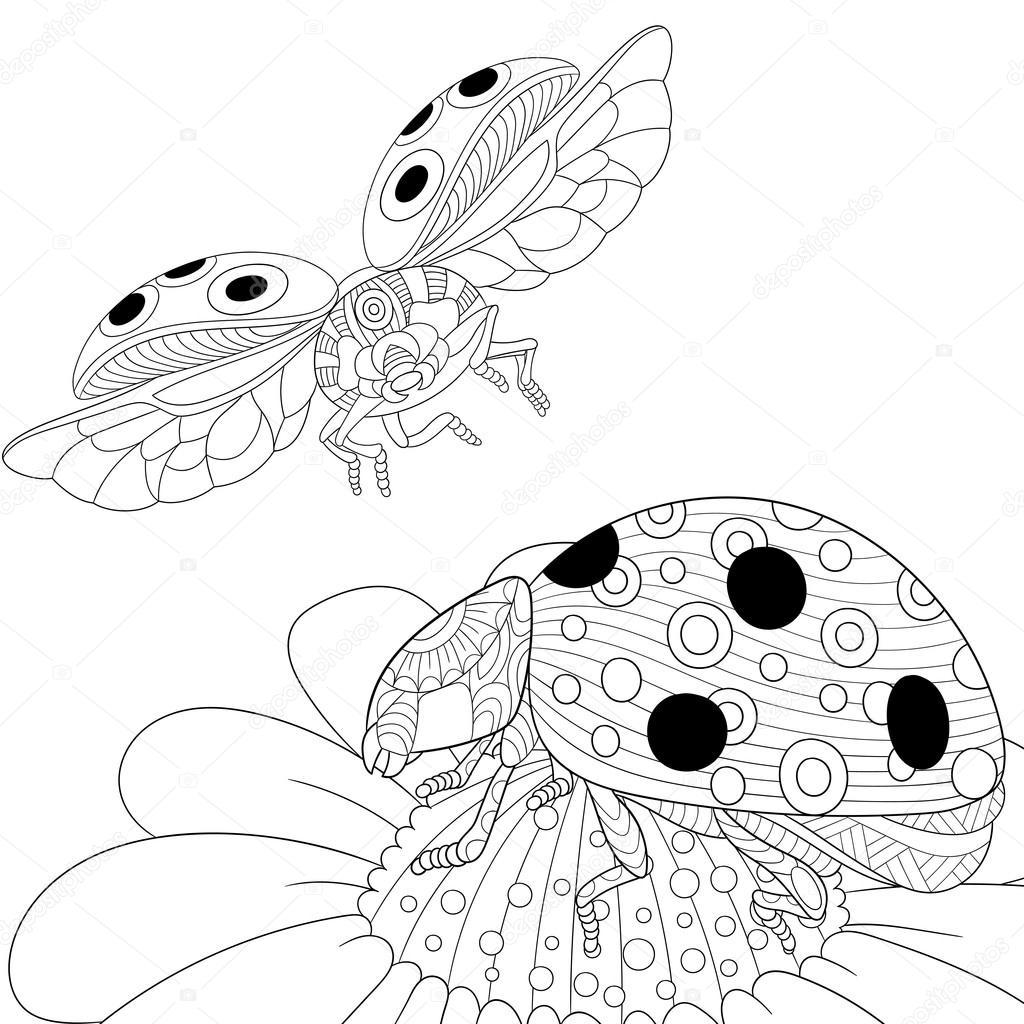 Zentangle stilisiert zwei Marienkäfer — Stockvektor © Sybirko #111533220