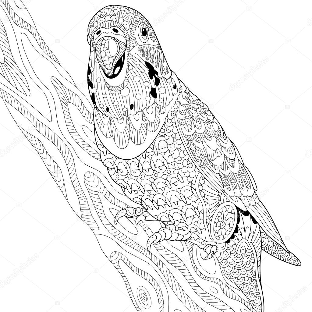 Super Pappagallo di zentangle budgie stilizzato — Vettoriali Stock  EJ27