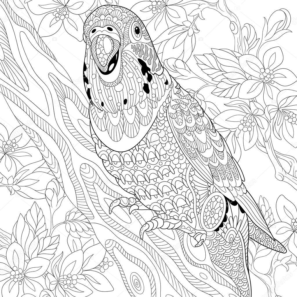 Zentangle Stilize Muhabbet Kuşu Papağan Stok Vektör Sybirko
