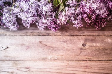 Lilacs on wooden backgorund