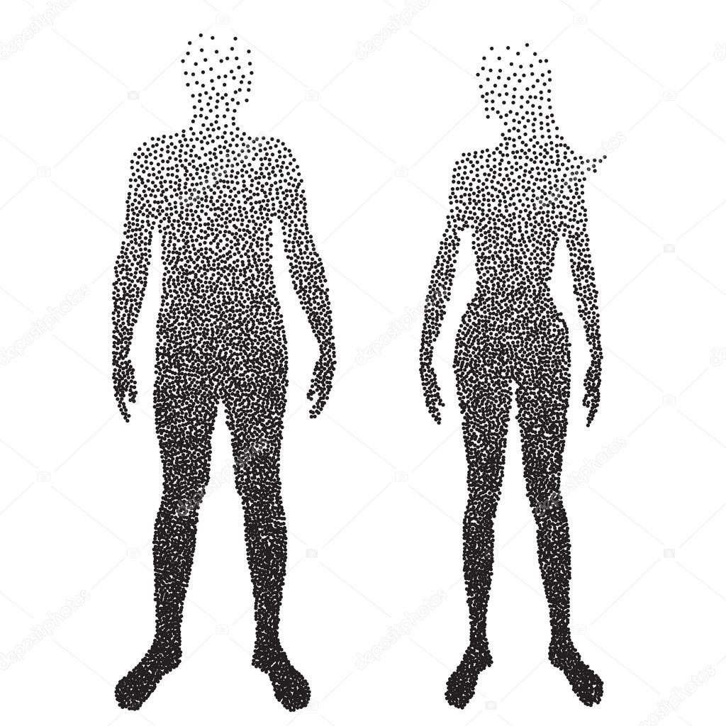 Cuerpo de semitono, macho y hembra anatomía, diseñado con punto ...