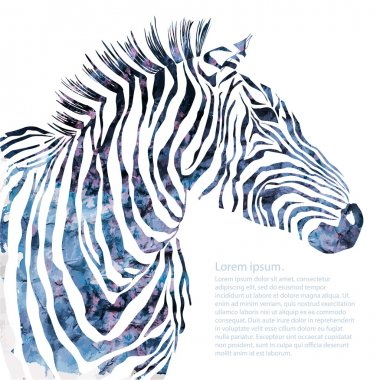 Animal watercolor illustration decorative silhouette zebra. Vector clip art vector