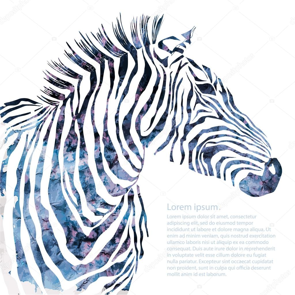Animal watercolor illustration decorative  silhouette zebra