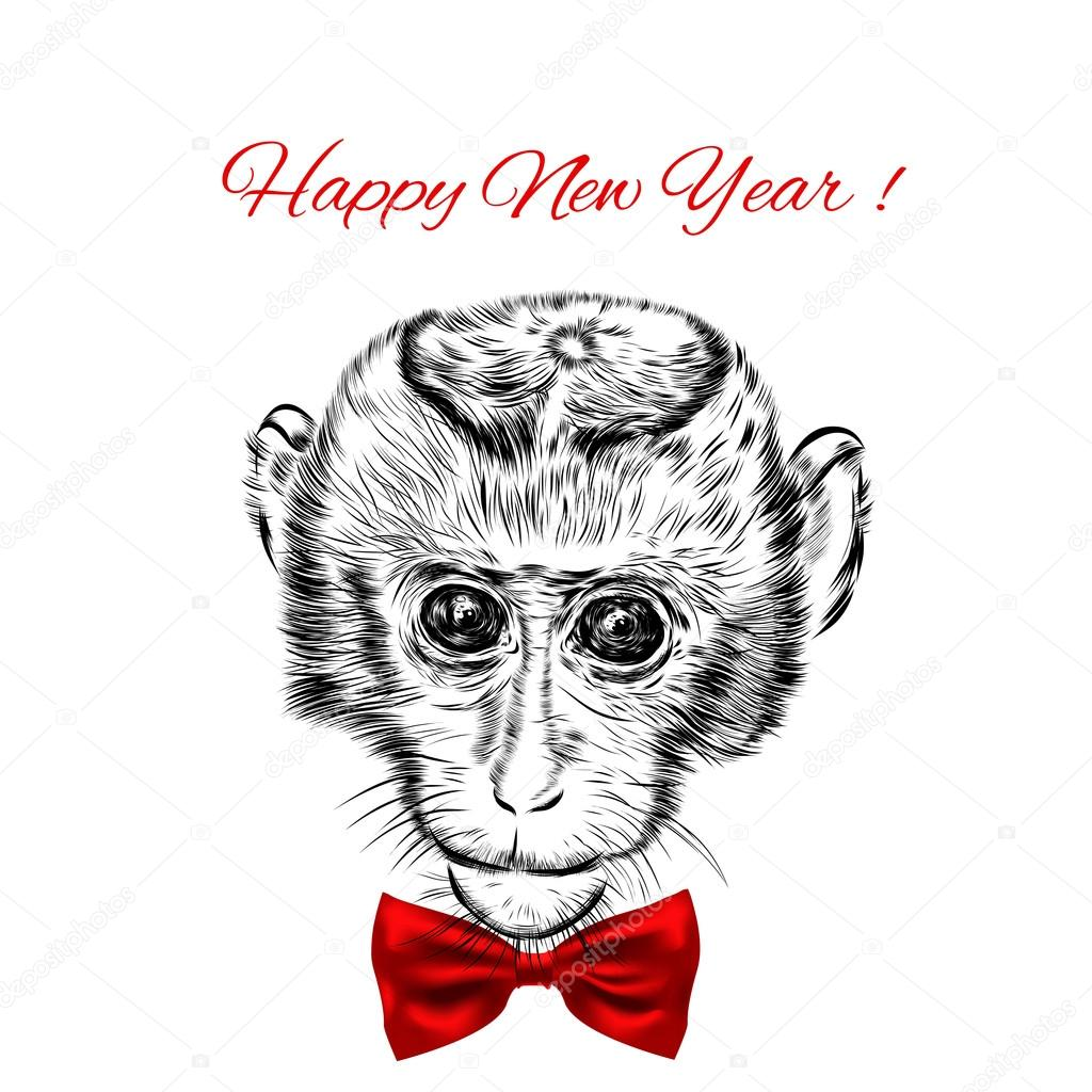 sketch monkey face with red bow hand drawn doodle vector