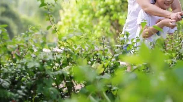 Asijská matka a syn jsou zalévat strom, stojící ve stínu stromu v zahradě