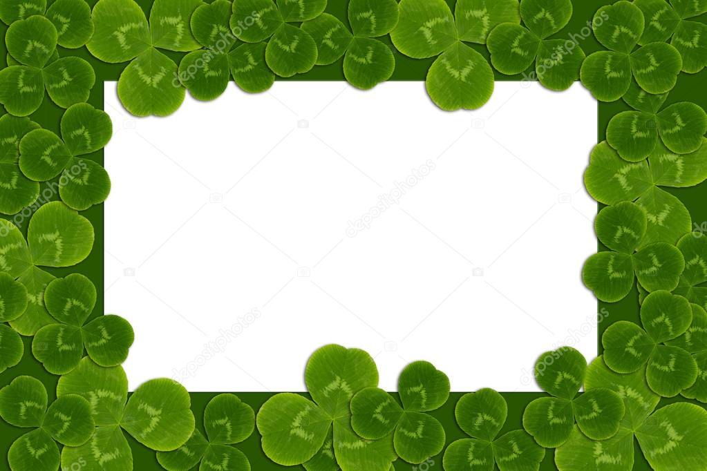 marco de hojas patrón de trébol trébol trébol — Foto de stock ...