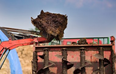 Bucket with natural manure