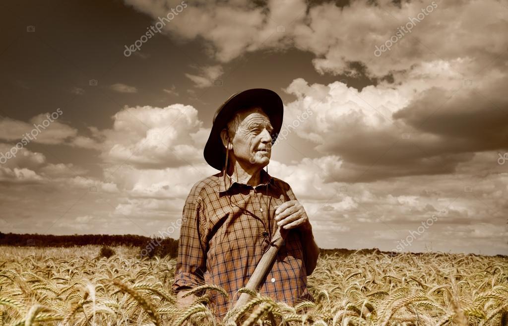 Senior man in the field