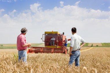 Business partners on wheat field
