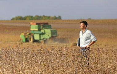 Man on soybean field
