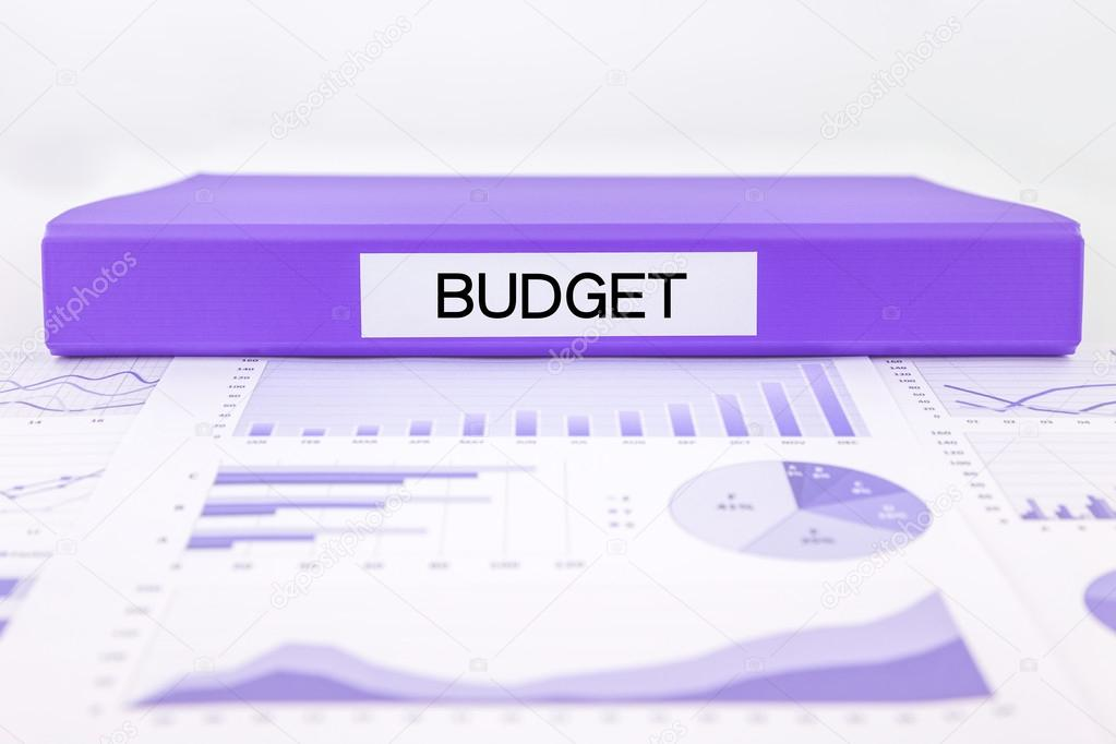 budget management with graphs charts and financial plan stock