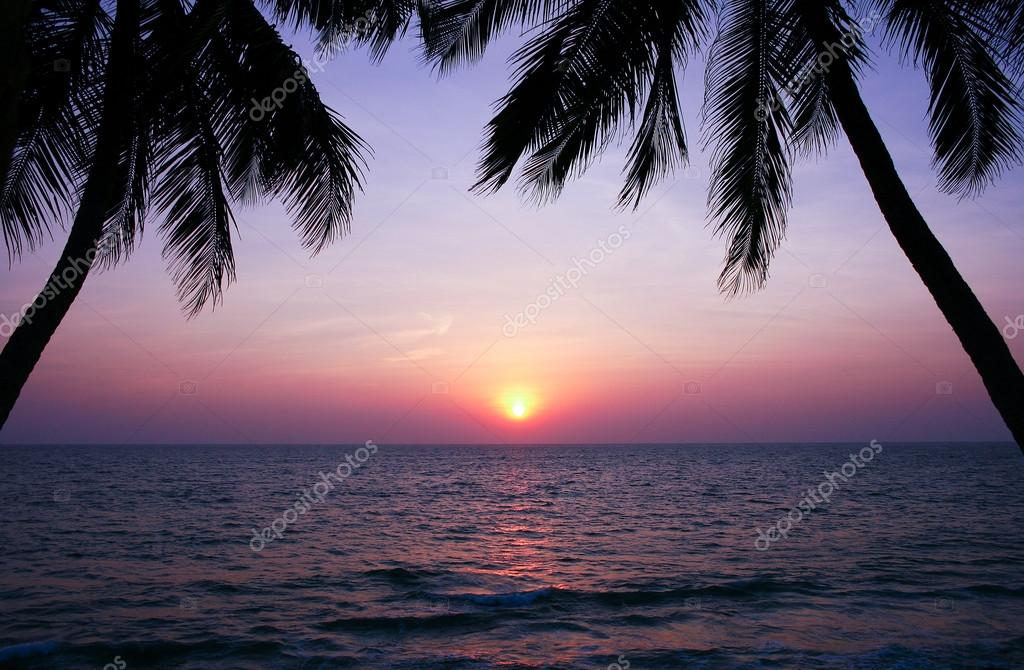 Beautiful sunset over the sea and palm trees silhouettes.