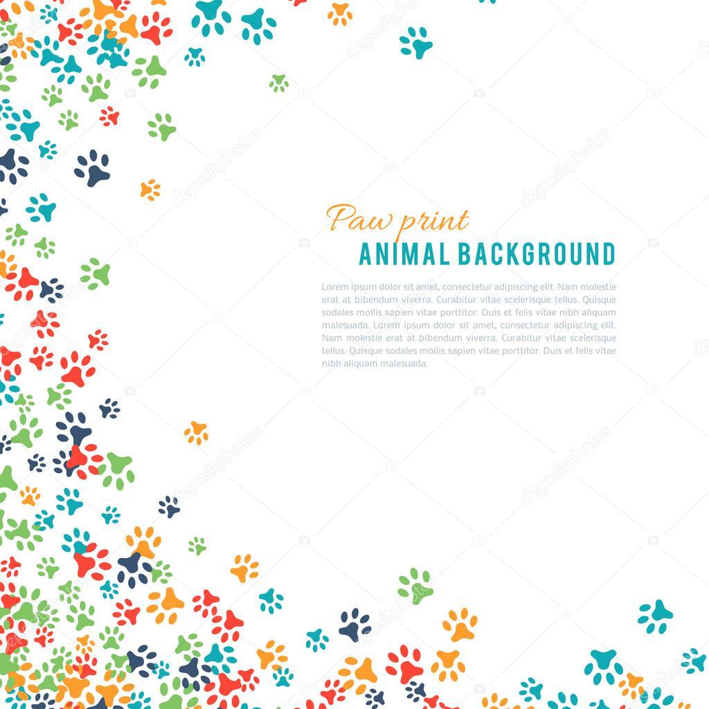 白い背景で隔離カラフルな動物のフット プリントの飾り枠 — ストック