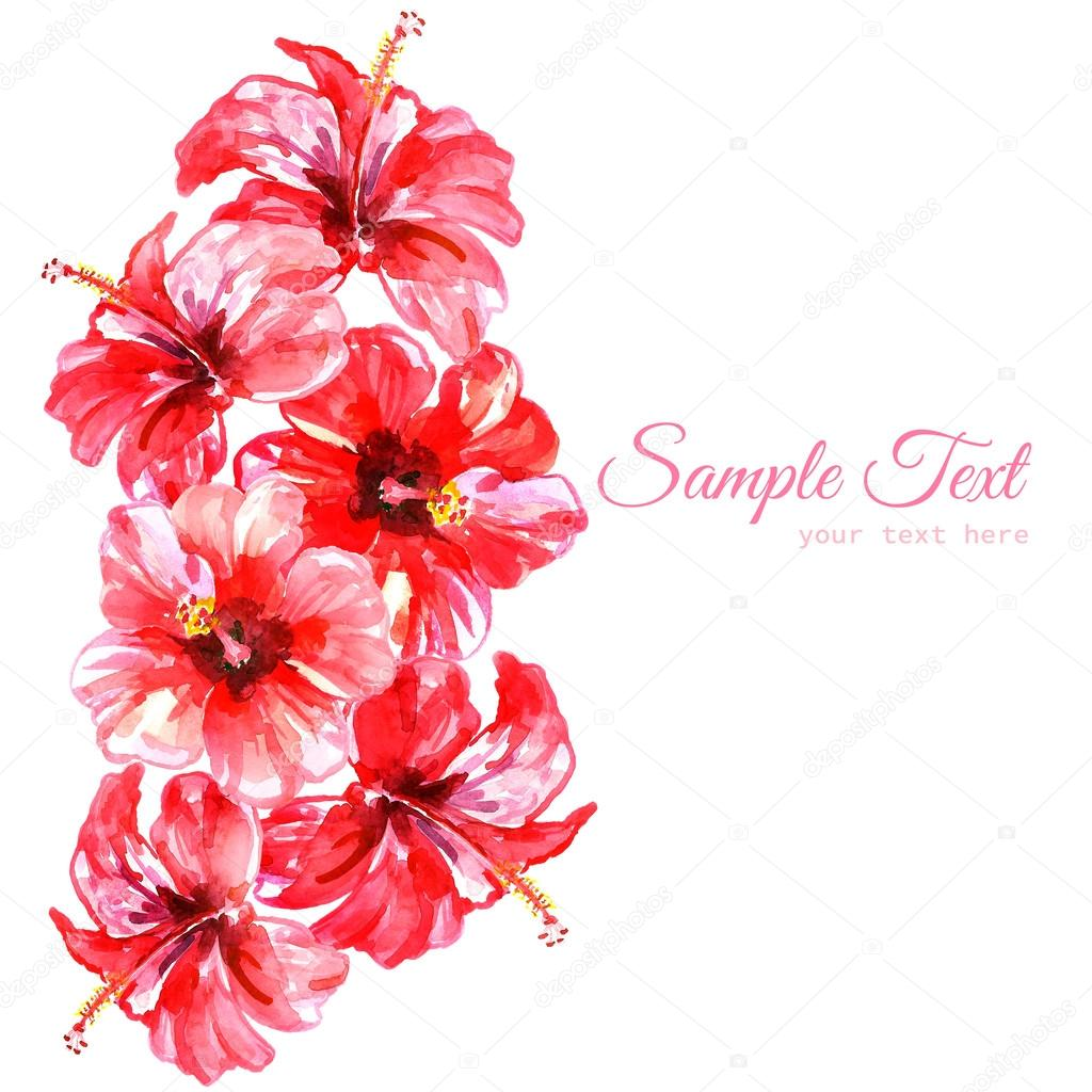 Frame from red watercolor hibiscus flowers stock photo kannaa frame from red watercolor hibiscus flowers stock photo izmirmasajfo