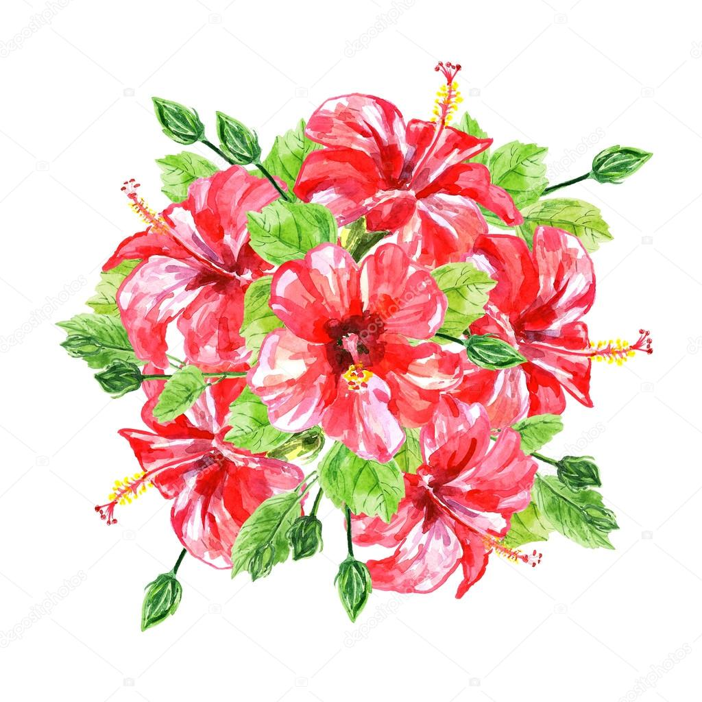 Bouquet from red watercolor Hibiscus flowers. — Stock Photo © Kannaa ...