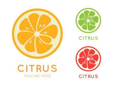 Kinds of citrus stylish icon. Juicy fruit logo