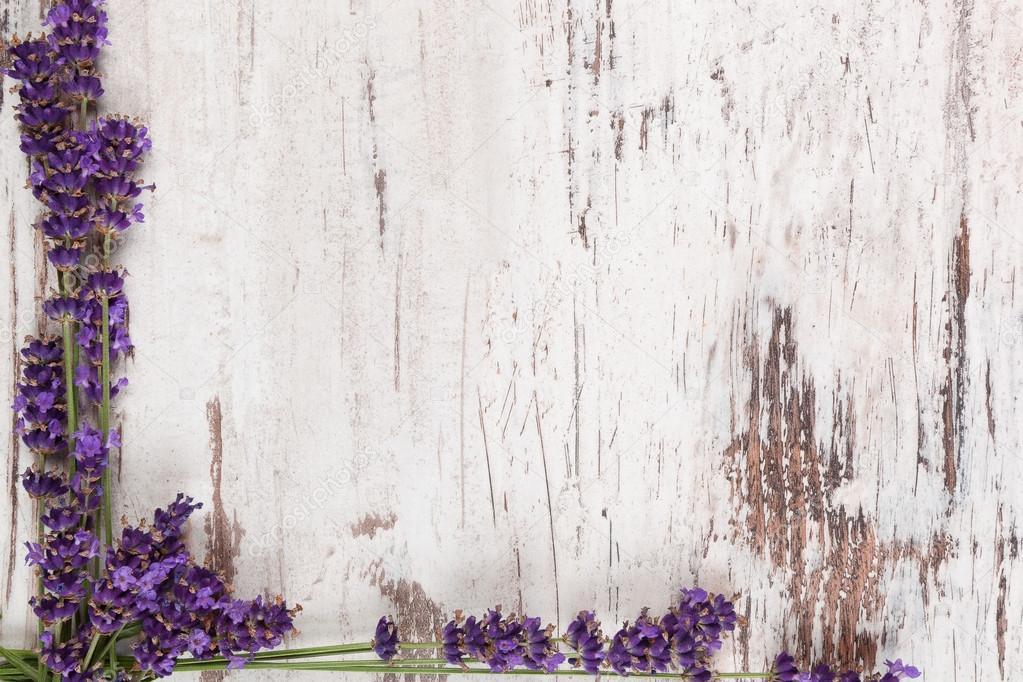 Lavender background.