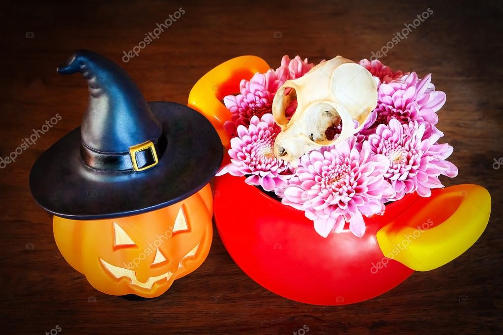 pumpkin and skull in halloween concept on panel wooden backgroun