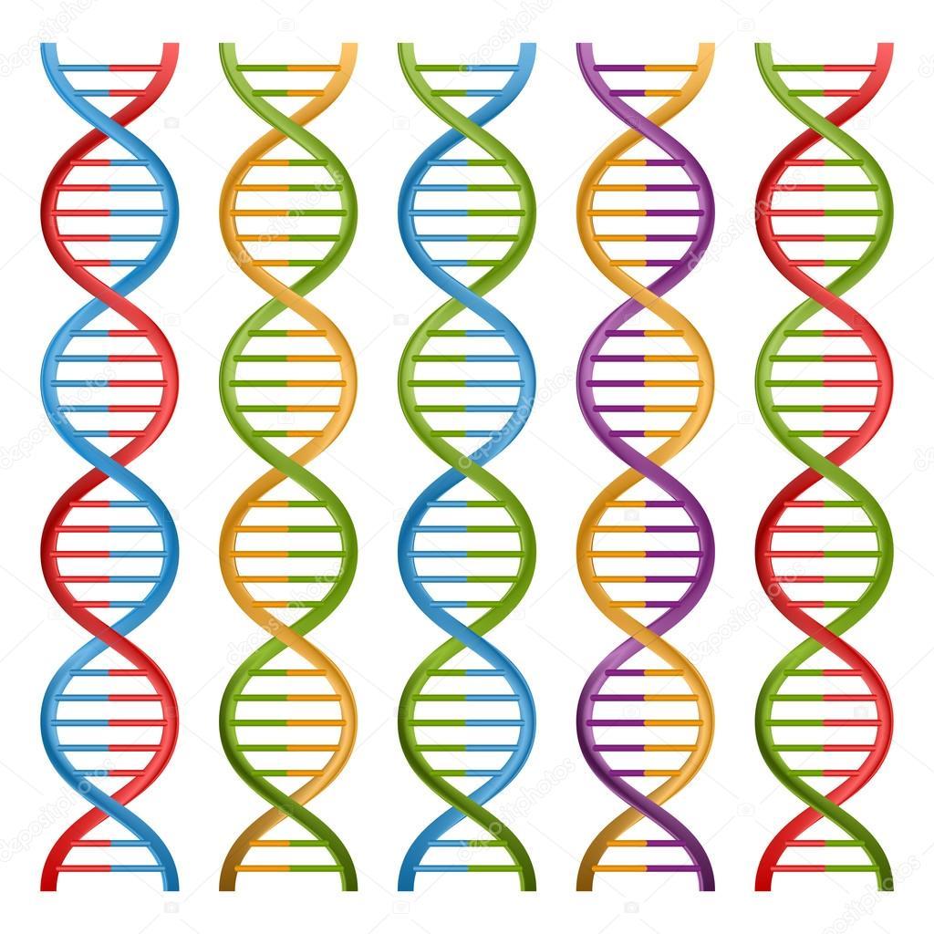 Set Of Dna Symbols For Science And Medicine Vector Design Stock