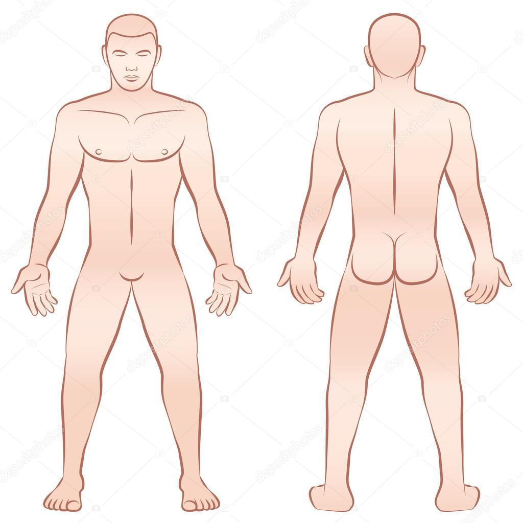 Naked Male Body Outline Illustration Stockvektor