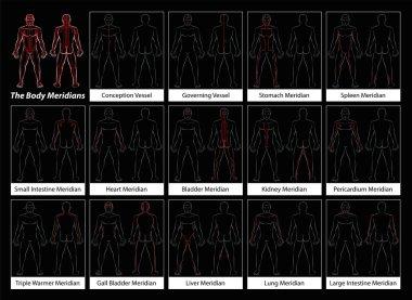 Body Meridians Detailed Diagram Black