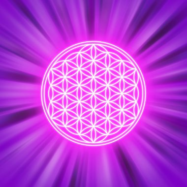 Bright Flower of Life on pink light rays