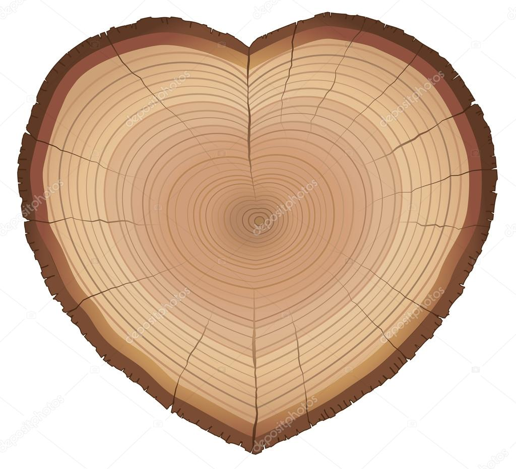 Love Nature Wood Rings Heart Shaped Symbol
