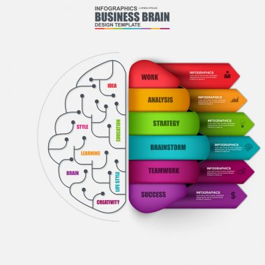 Infographic brain vector design template