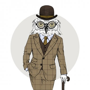 owl dressed up in vintage tweed suit
