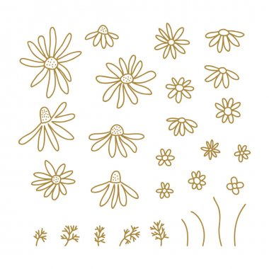 Chamomile wildflower line art clipart set. Botanical collection of doodle flowers. Vector illustration isolated on white background. Daisy simple hand drawn design elements. icon