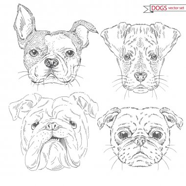 animal set of dogs