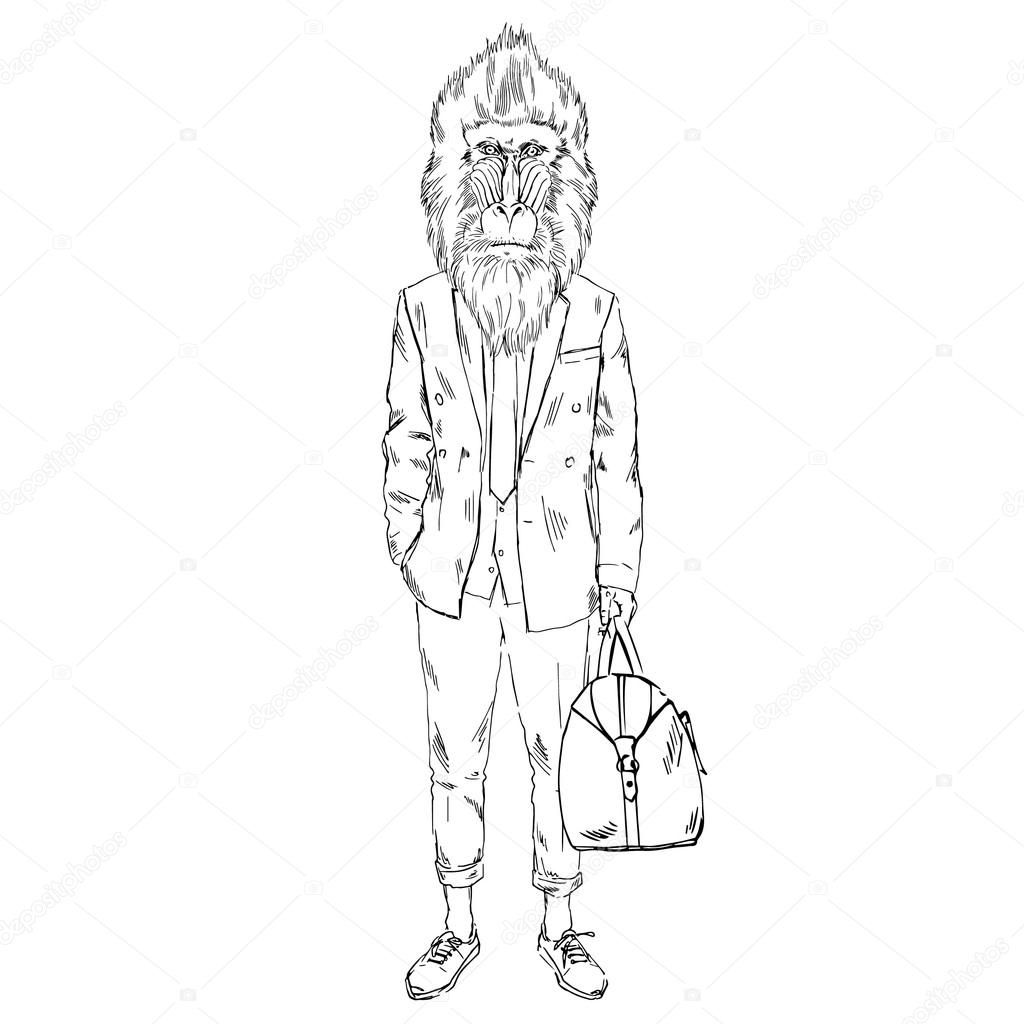 Mandrillus sphinx monkey hipster sketch