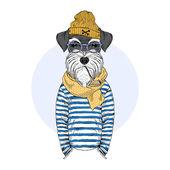Schnauzer kutya tengerész