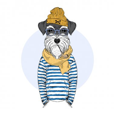 schnauzer dog sailor