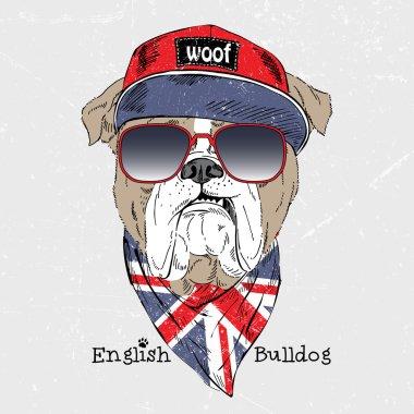 English bulldog dressed up in t-shirt