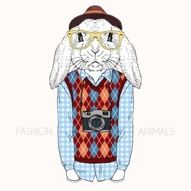 bunny hipster with camera