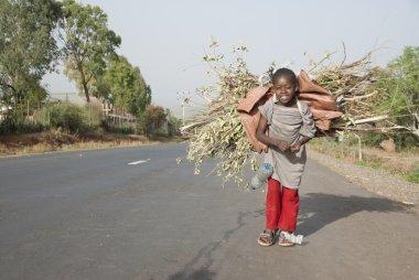 Ethiopian girl carries bundle of brushwood in Conso, Ethiopia.