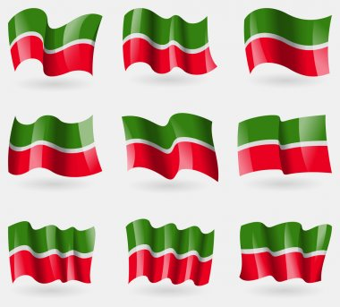 Set of Tatarstan flags in the air. Vector