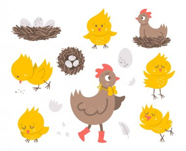 Vector set with cute hen, little chicks, eggs, nest. Spring or Easter funny illustration isolated on white background for kids. Farm bird icons pack icon