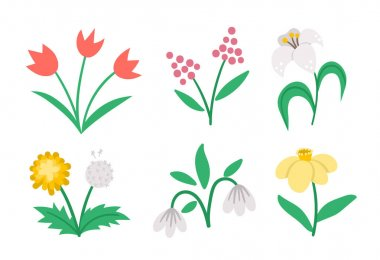 Vector cute flat spring flowers icons set. First blooming plants illustration. Floral clip art collection. Tulips, dandelion, snowdrop, narcissus, lily isolated on white background icon