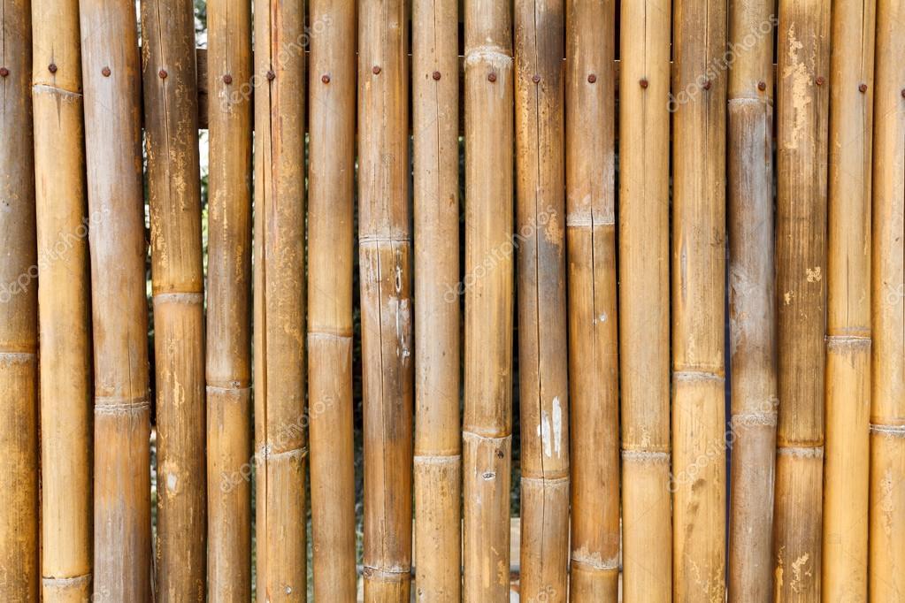 Fotos Bambu Seco Fondo De Pared De Bambu Secos Foto De Stock