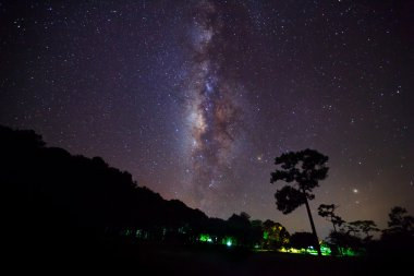 Silhouette of Tree with cloud and Milky Way. Long exposure photo
