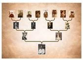 Tree of family history