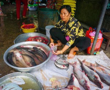 Asian women selling fresh fishes