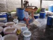 Vietnamský lidí dělat rýžové nudle
