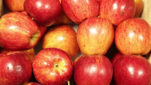 apples in the greengrocery