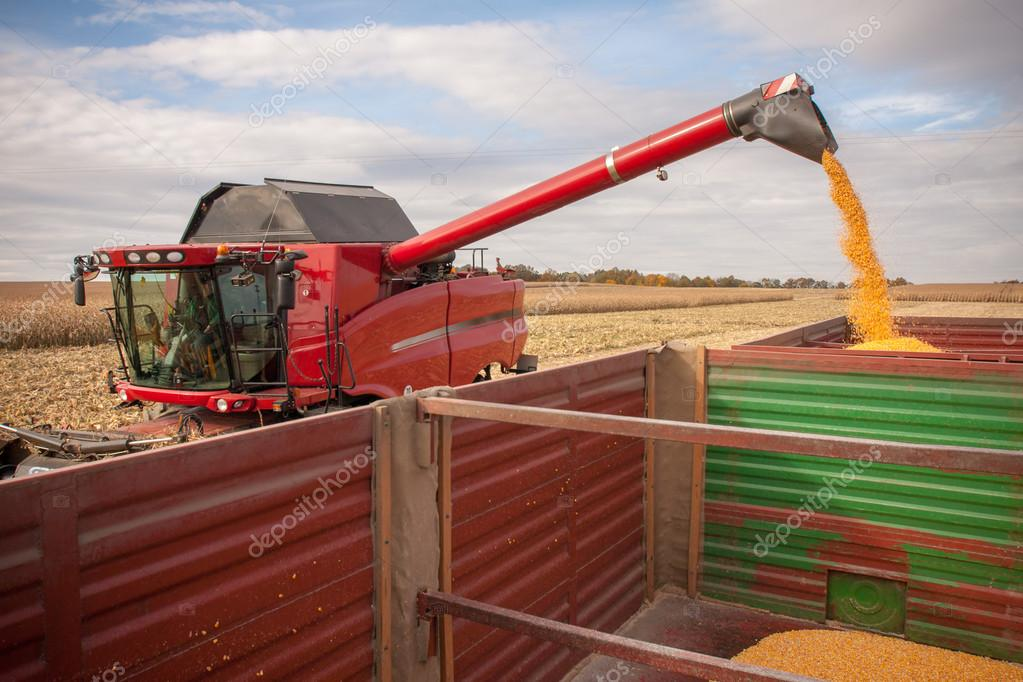 Corn tank