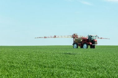Spraying the herbicides on the green field